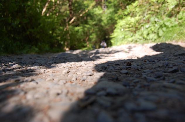 6号路ハイキング・トレッキングコース・天気良好