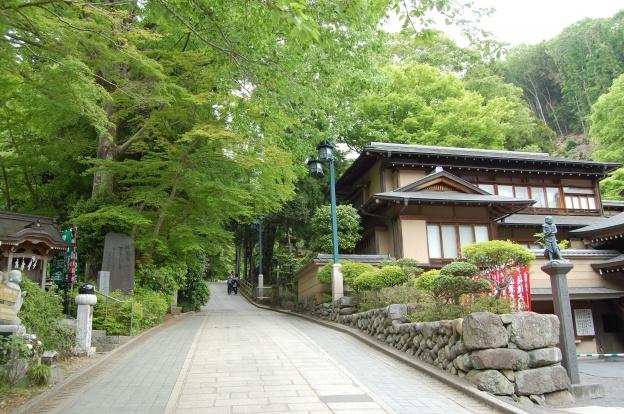 朝から天気がよく1号路の新緑紅葉がお出迎え@高尾山