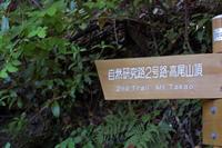 二号路 霞台ループコース