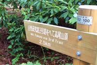 三号路 かつら林コース