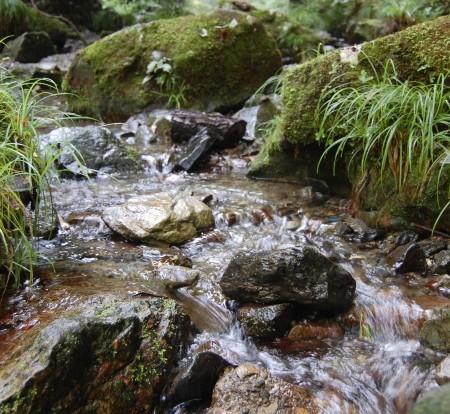 蛇滝コースの流れ
