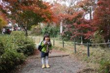 2018年高尾山の紅葉シーズン真っ只中♪
