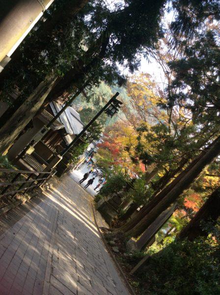 登山口から見える秋